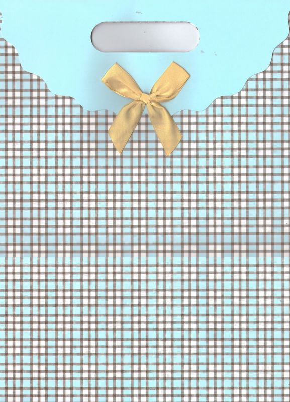 Пакет подарочный (25x31.8)